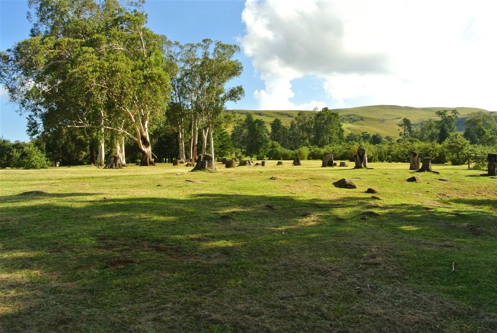 Cobham Nature Reserve, Drakensberg