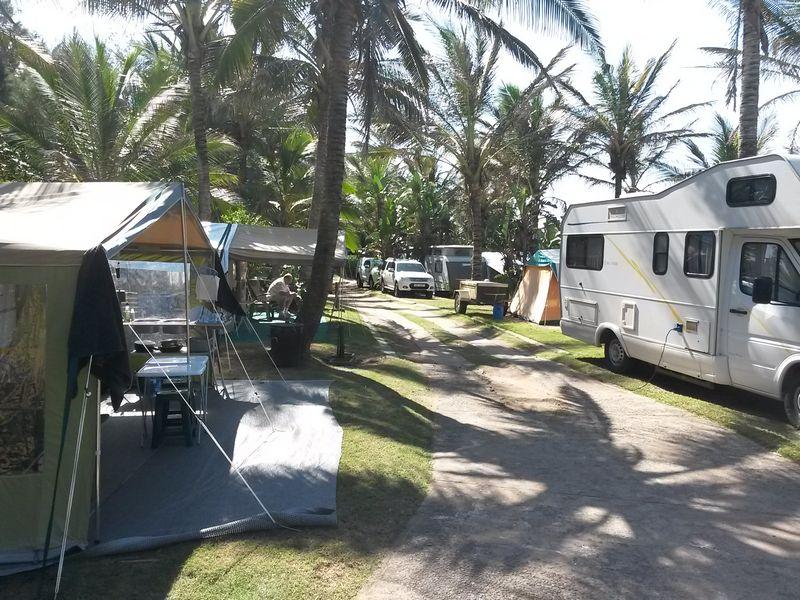 Salt Rock Caravan Park, Salt Rock Beach | Love Camping